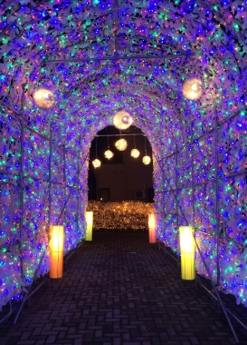 北海道洞爺湖行程推薦冬季點燈