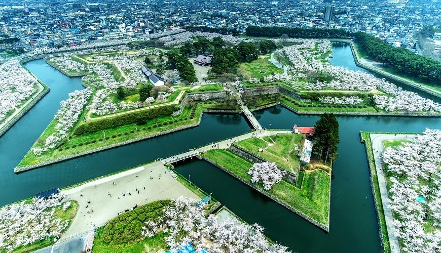 函館 記念 過去