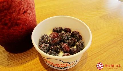 北海道札幌推薦霜淇淋店!登別牛奶做的冰淇淋霜淇淋「COOL GARDEN」的藍靛果忍冬果汁(ハスカップジュース)
