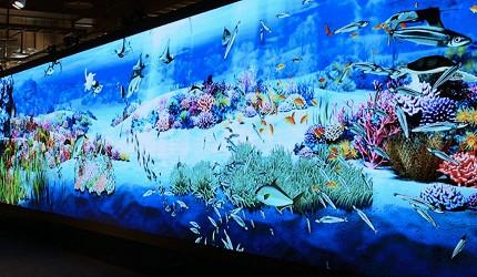 函馆亲子游推荐景点:「函馆未来馆」的设施创意工作坊的电子水族馆