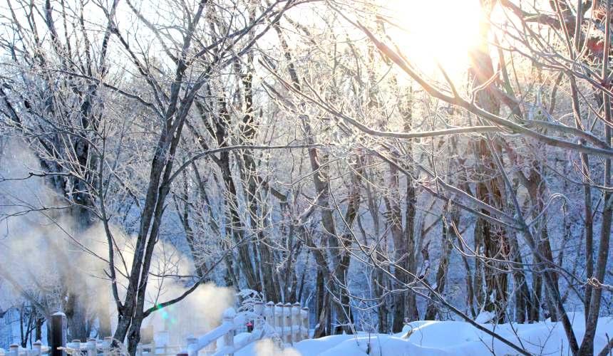 北海道釧路「阿寒湖」旅行推薦景點!冬天的「Bokke散步道」