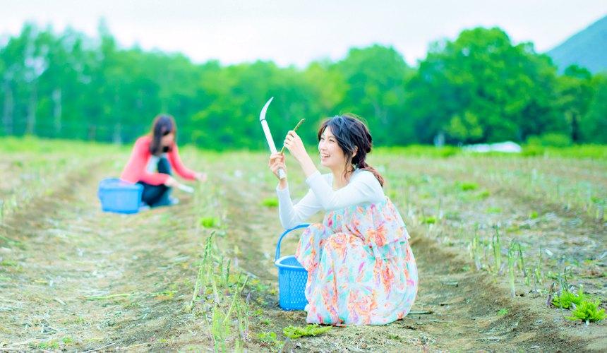 北海道最大的四季度假胜地「留寿都度假区」的夏天户外活动