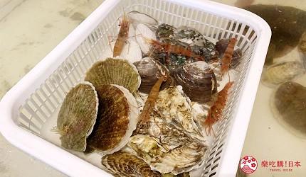 去北海道札幌必去,位于二条市场能一次过食到新鲜肥美海鲜丼、即烧即食生勐海鲜的海鲜专门店海鲜烧小屋「大矶」内的食材新鲜生勐,像是扇贝、大虾、牡蛎,都大颗又生勐