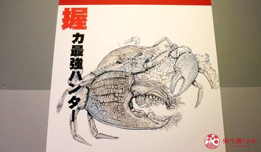 北海道親子遊推薦城堡式登別尼克斯海洋公園內城堡內精美海報