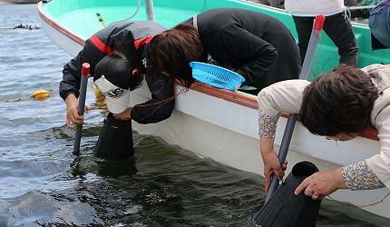 日本北海道最北端的地区稚内市宗谷的利尻岛神居海岸公园可以体验传统古法手捕海胆