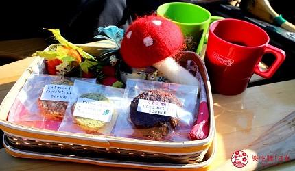 北海道道東三湖必玩雪上活動推薦推介兩旁樹下湖冰獨木舟時可在冰河上享受到的手作餅乾和熱可可